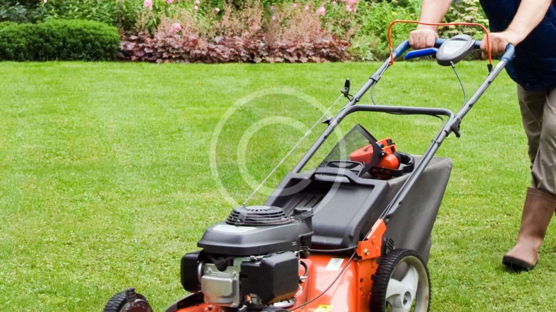 Modern Lawnmowers